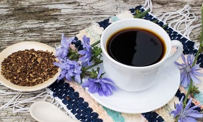 cafea de cicoare beneficii si proprietati