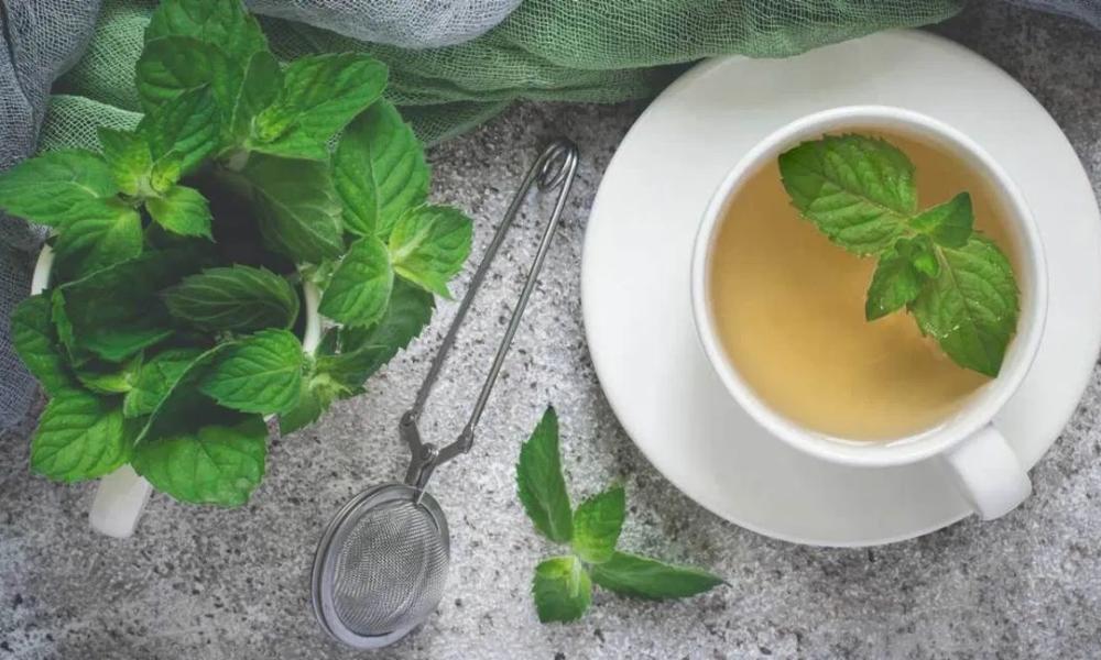 slimming ceai cu frunze de menta