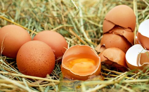 oua crude avantaje și dezavantaje
